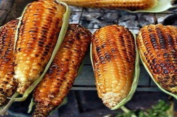 roasted corn on a grill